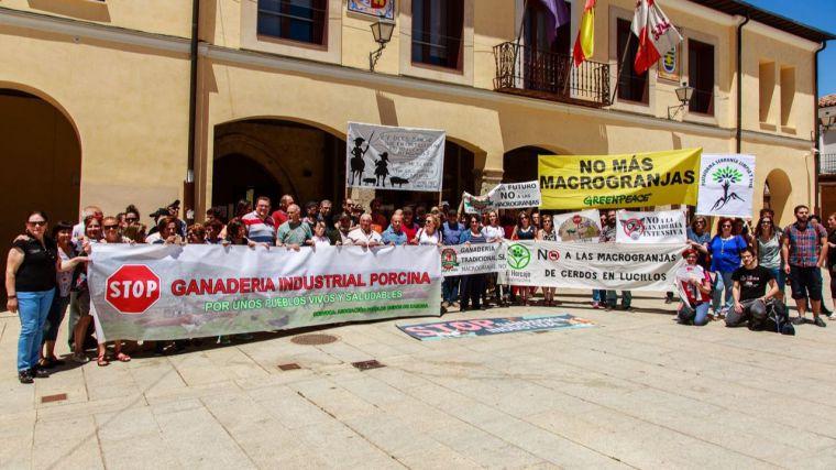 CLM Stop Macrogranjas, candidata al Premio Regional al Medio Ambiente 2019