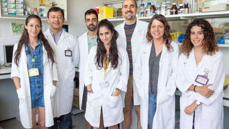 Investigadores del Hospital de Parapléjicos desarrollan microelectrodos de fibra de carbono que permiten el movimiento estimulando la médula espinal