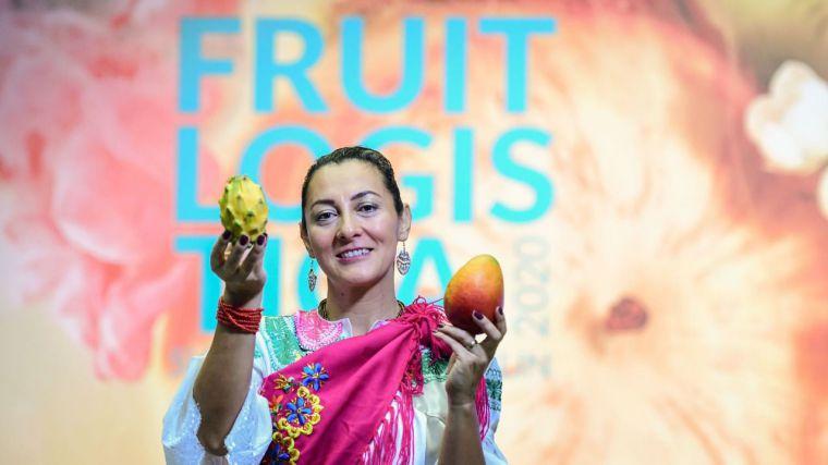 Cebollas, ajos, melones y sandías de CLM, a la conquista del mercado internacional