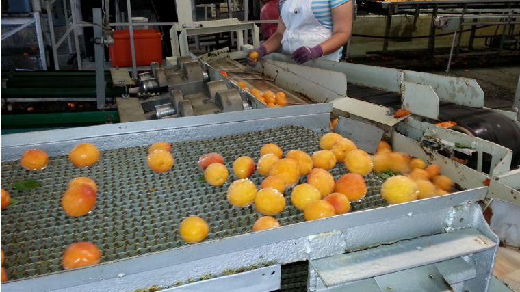 El sector agroalimentario evita un mayor descalabro de la producción industrial de CLM en marzo