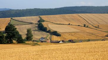 El gobierno libra hoy 18,6 millones de euros de ayudas a zonas de montaña a 11.500 agricultores