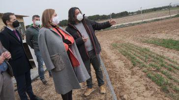 Mañana reabren los parques y yacimientos arqueológicos de Castilla-La Mancha que seguirán siendo gratuitos hasta el 31 de mayo