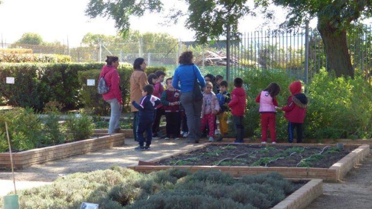 El Gobierno de la Diputación de Toledo pondrá en marcha una pionera red provincial de huertos escolares ecológicos en la provincia