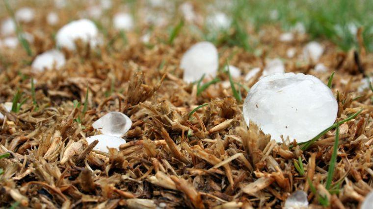 Agroseguro recibe partes de daños de 6.000 hectáreas de la región afectadas tras el pedrisco caído el pasado martes