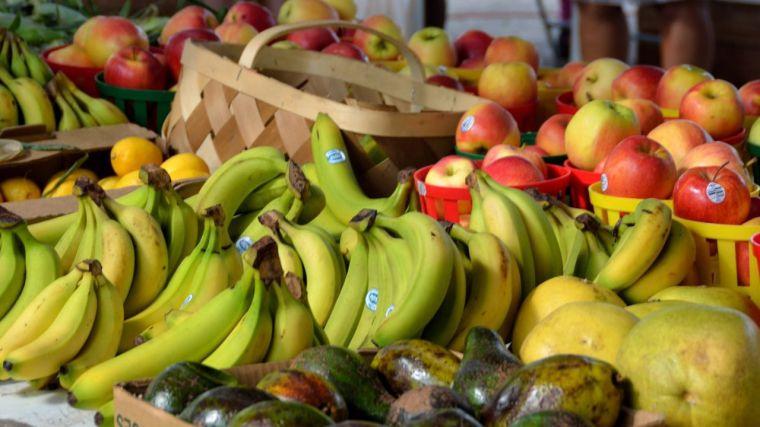 El sector agroalimentario impulsa las exportaciones en CLM en la primera mitad del año