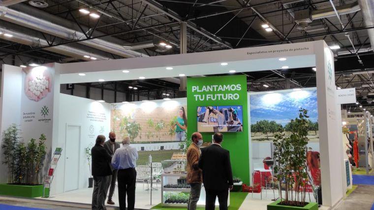 Agróptimum consolida el pistacho como uno de los cultivos más rentables en Castilla-La Mancha