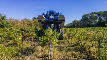 La industria vitivinícola exige a Asaja hacer público el presunto fraude de las bodegas de la región
