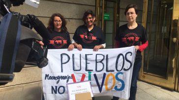 Vecinos y colectivos de Alpera rechazan la instalación de una macrogranja porcina en la localidad