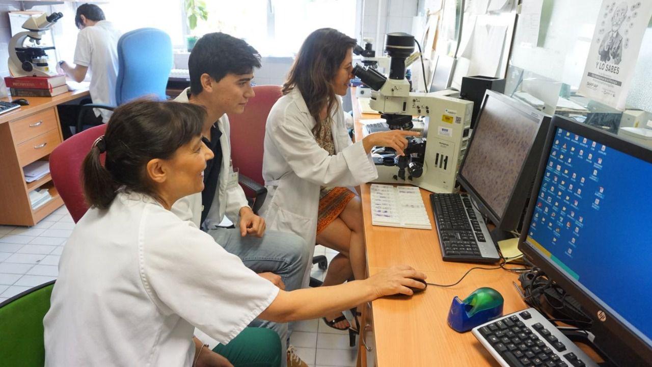 El Hospital de Toledo, elegido para la formación práctica en ...