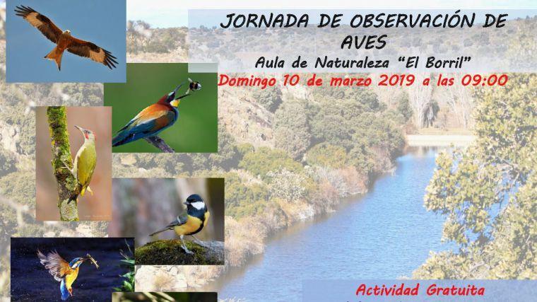 La Diputación de Toledo retoma las jornadas de observación de aves en El Borril