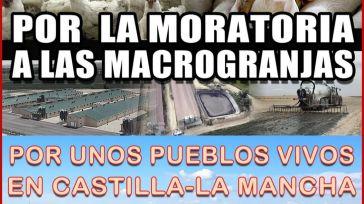 Pueblos de toda Castilla-La Mancha se manifiestan en Toledo para exigir una moratoria que paralice las licencias de macrogranjas