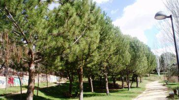 La Diputación de Toledo ha destinado más de 600.000 euros esta legisltura para el ajardinamiento de espacios verdes municipales